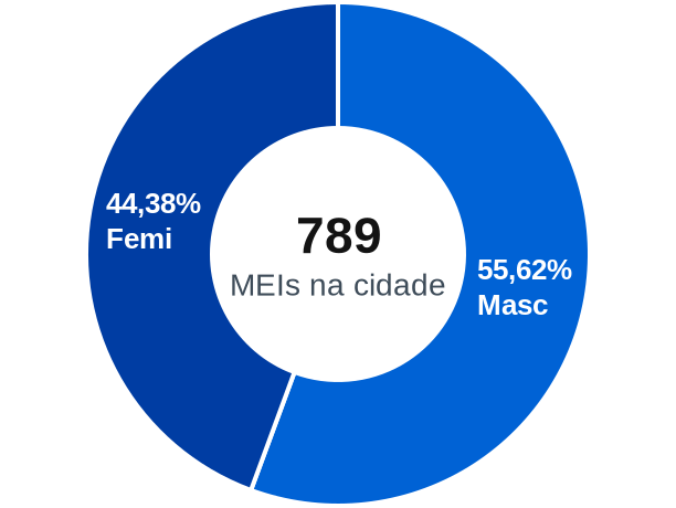 Gênero de MEIs na cidade de Conceição do Rio Verde