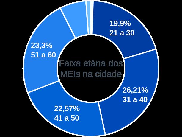 Faixa etária de MEIs na cidade de Delfim Moreira