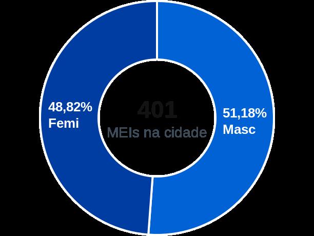 Gênero de MEIs na cidade de Delfinópolis