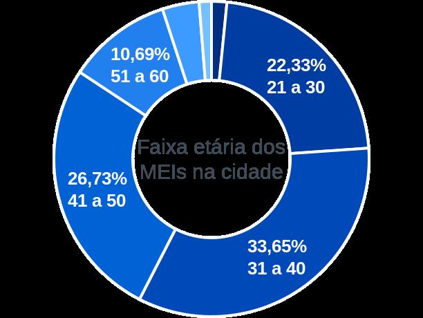 Faixa etária de MEIs na cidade de Divisa Alegre