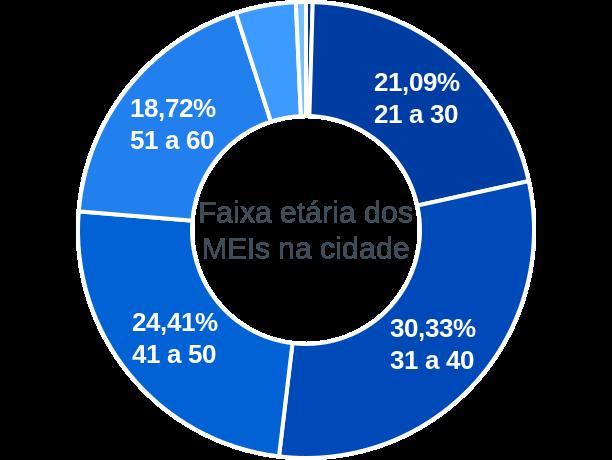 Faixa etária de MEIs na cidade de Dona Euzébia