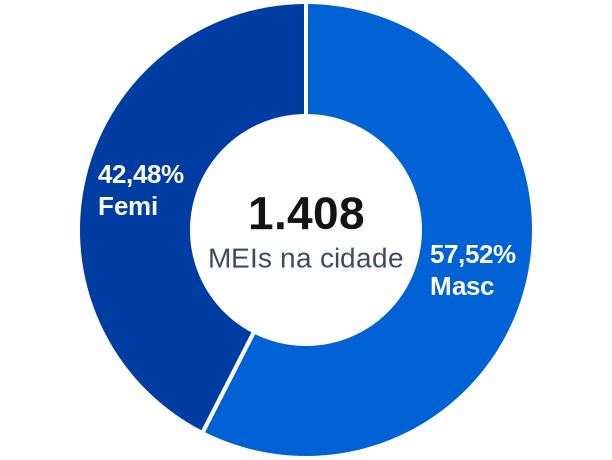Gênero de MEIs na cidade de Elói Mendes
