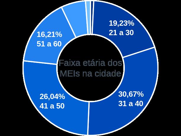 Faixa etária de MEIs na cidade de Elói Mendes