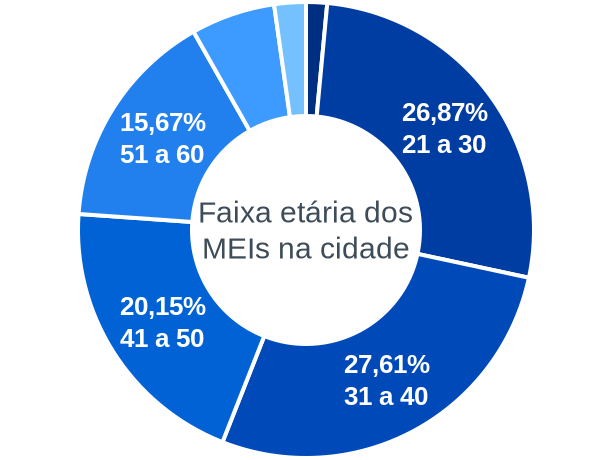 Faixa etária de MEIs na cidade de Engenheiro Navarro