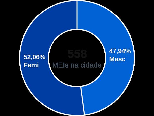 Gênero de MEIs na cidade de Estiva