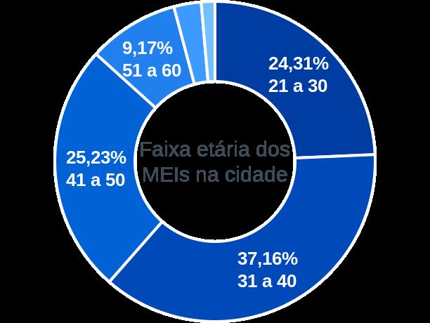 Faixa etária de MEIs na cidade de Felício dos Santos