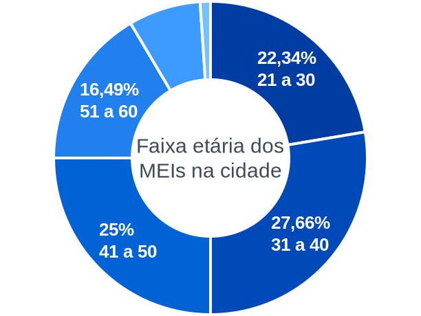 Faixa etária de MEIs na cidade de Fortaleza de Minas