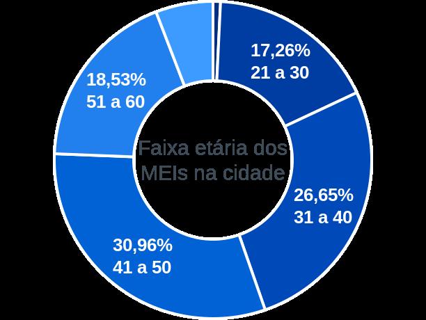 Faixa etária de MEIs na cidade de Fortuna de Minas