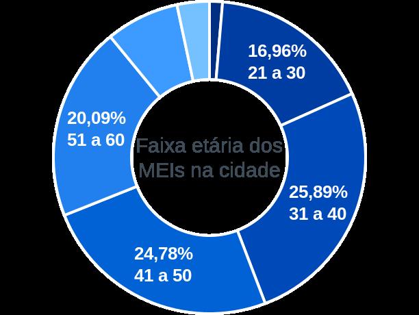 Faixa etária de MEIs na cidade de Gonçalves