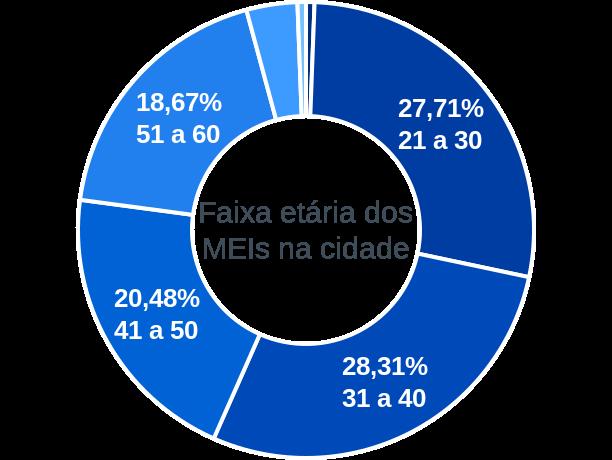 Faixa etária de MEIs na cidade de Ibitiúra de Minas