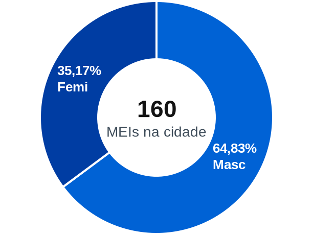 Gênero de MEIs na cidade de Icaraí de Minas