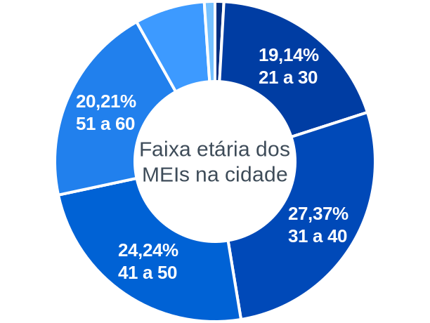 Faixa etária de MEIs na cidade de Ipanema