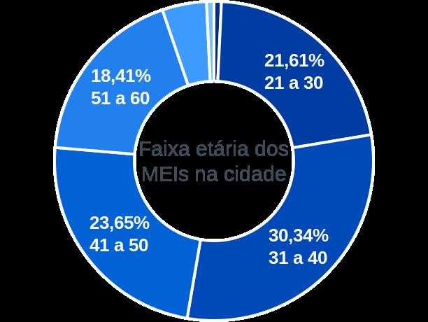Faixa etária de MEIs na cidade de João Pinheiro