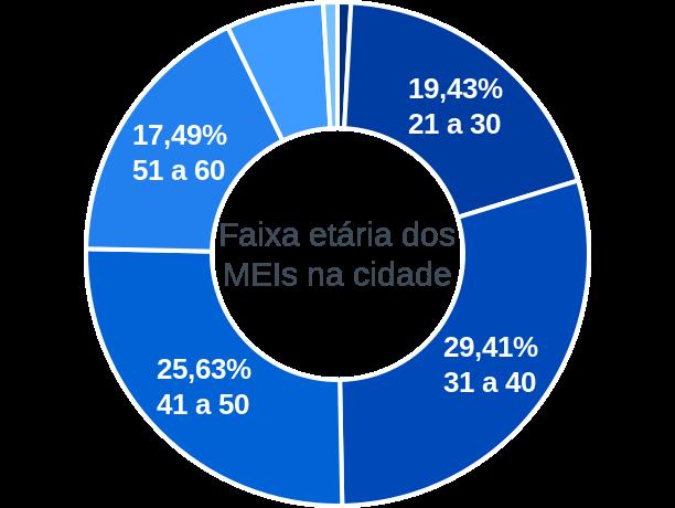 Faixa etária de MEIs na cidade de Lagoa da Prata