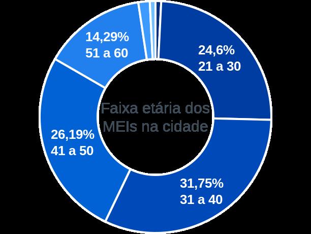 Faixa etária de MEIs na cidade de Lagoa dos Patos