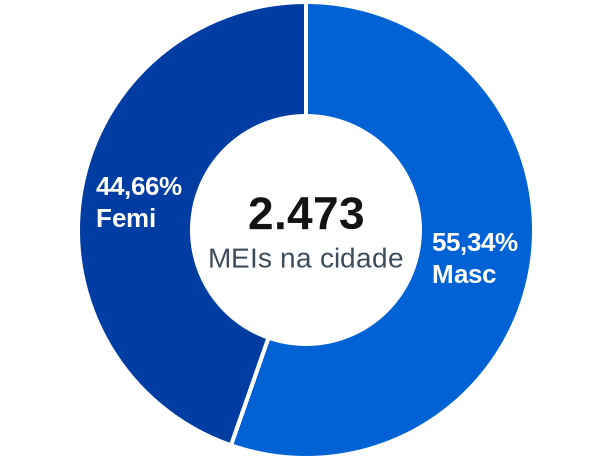 Gênero de MEIs na cidade de Machado