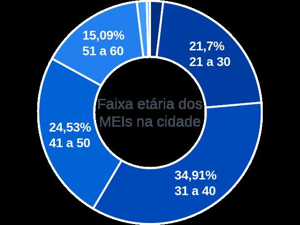 Faixa etária de MEIs na cidade de Matias Cardoso