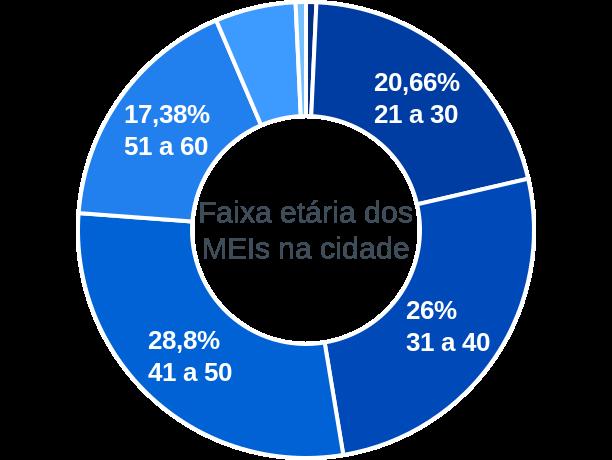 Faixa etária de MEIs na cidade de Monte Alegre de Minas