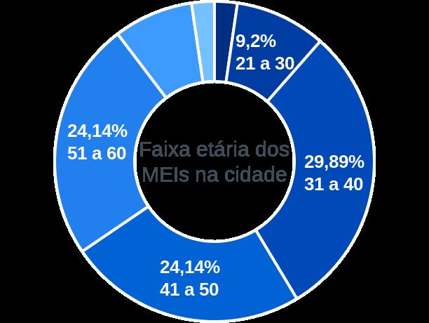 Faixa etária de MEIs na cidade de Morro da Garça
