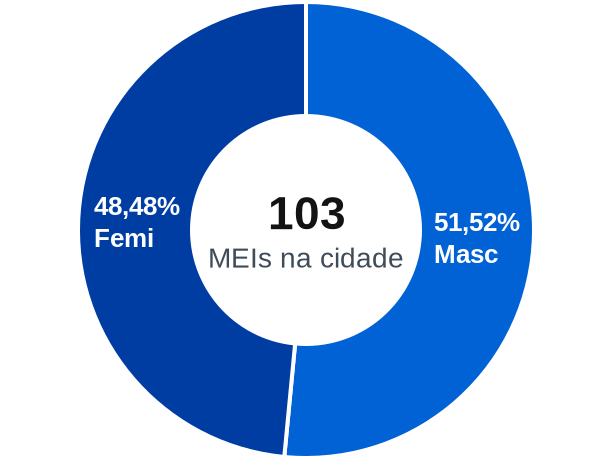 Gênero de MEIs na cidade de Nova Módica