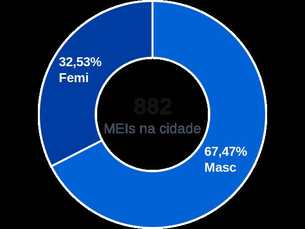 Gênero de MEIs na cidade de Novo Cruzeiro
