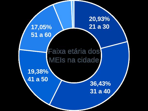 Faixa etária de MEIs na cidade de Paulistas