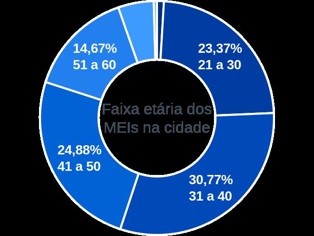 Faixa etária de MEIs na cidade de Ribeirão das Neves