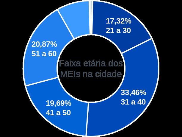 Faixa etária de MEIs na cidade de Ribeirão Vermelho