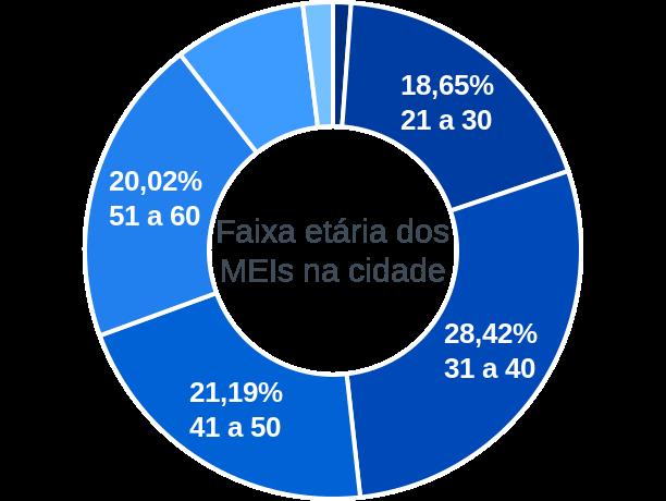 Faixa etária de MEIs na cidade de Rio Casca