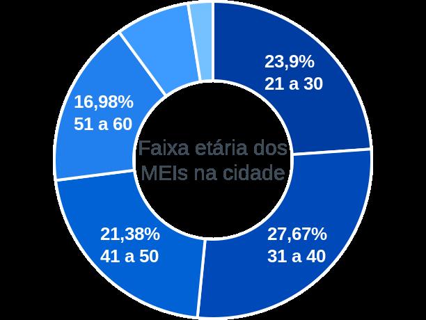 Faixa etária de MEIs na cidade de Rio Doce