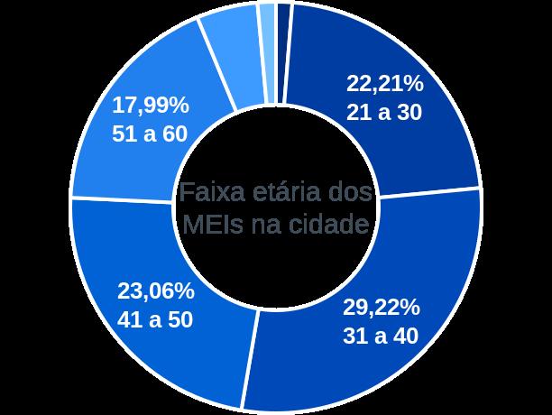 Faixa etária de MEIs na cidade de Rio Pomba