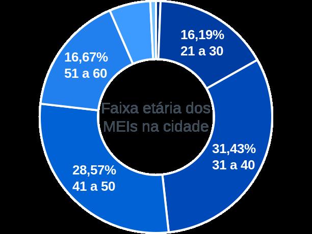 Faixa etária de MEIs na cidade de Santa Cruz de Minas