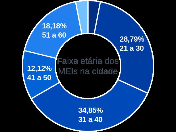 Faixa etária de MEIs na cidade de Santa Fé de Minas