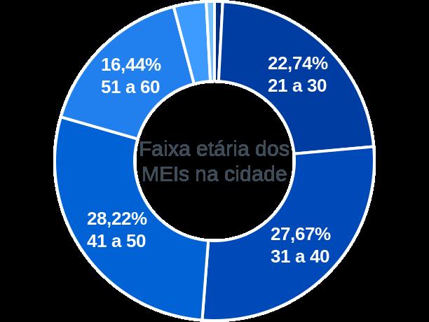 Faixa etária de MEIs na cidade de Santa Rita de Minas