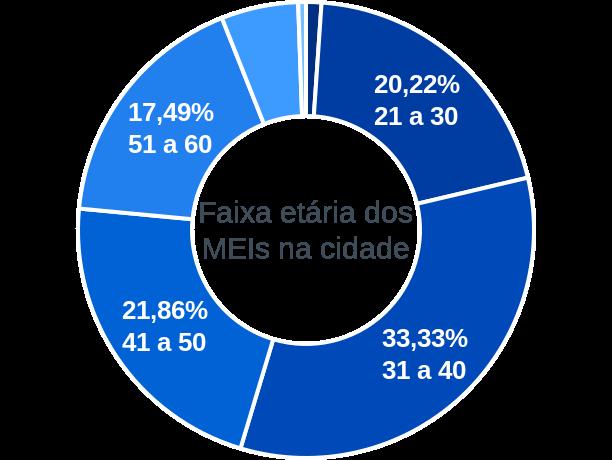 Faixa etária de MEIs na cidade de Santa Rosa da Serra