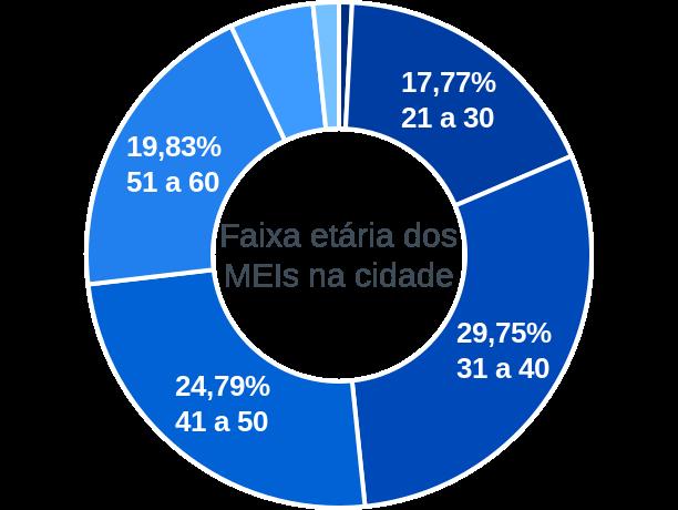 Faixa etária de MEIs na cidade de Santo Antônio do Grama