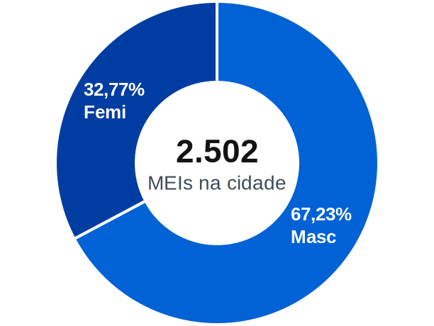 Gênero de MEIs na cidade de Santo Antônio do Monte