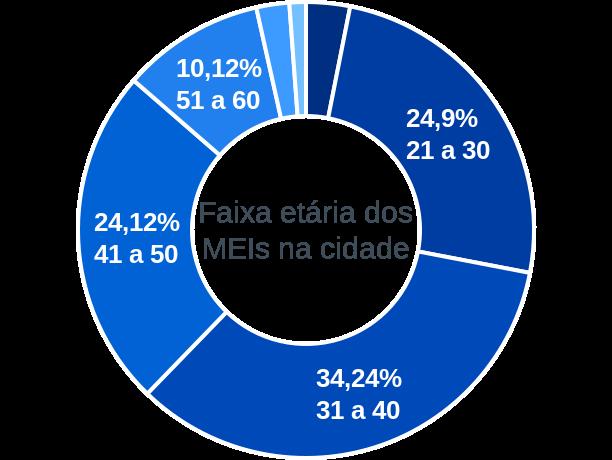 Faixa etária de MEIs na cidade de São Domingos das Dores