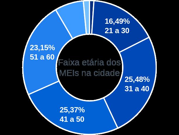 Faixa etária de MEIs na cidade de São Domingos do Prata