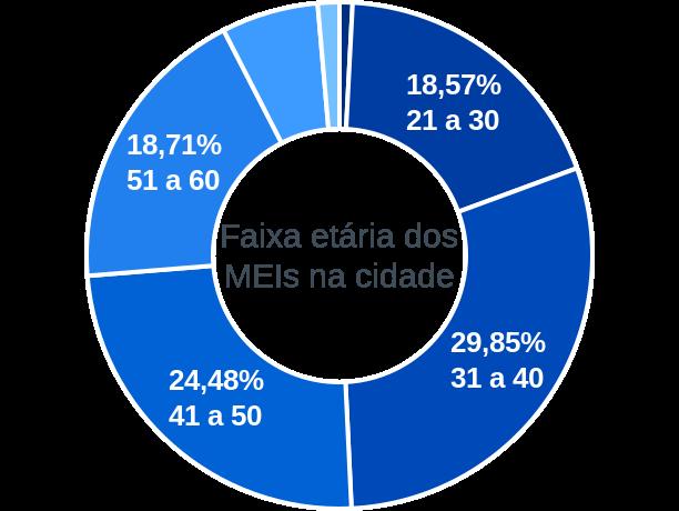 Faixa etária de MEIs na cidade de São Gonçalo do Pará