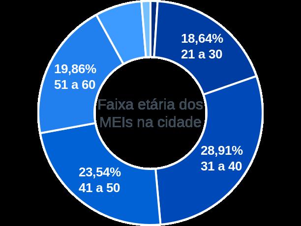 Faixa etária de MEIs na cidade de São Gonçalo do Sapucaí