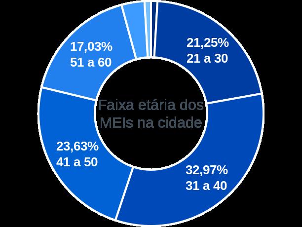 Faixa etária de MEIs na cidade de São João Evangelista