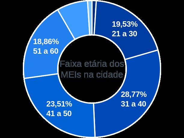 Faixa etária de MEIs na cidade de São João Nepomuceno