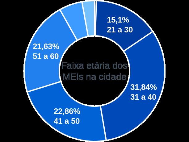 Faixa etária de MEIs na cidade de São José do Goiabal