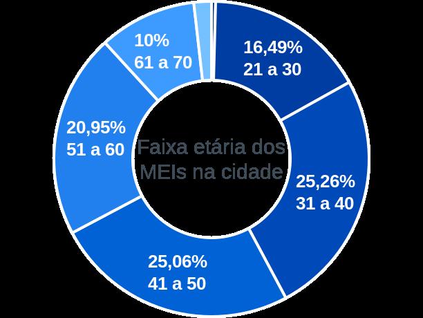 Faixa etária de MEIs na cidade de São Lourenço