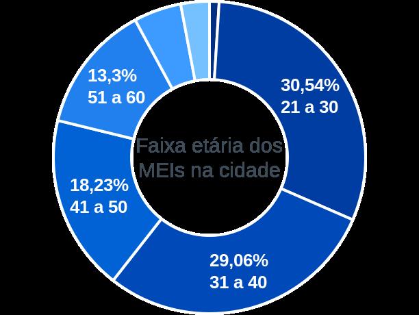 Faixa etária de MEIs na cidade de São Miguel do Anta
