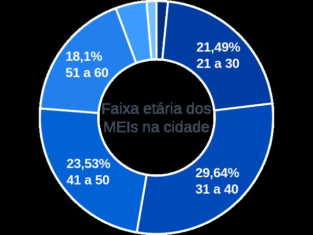 Faixa etária de MEIs na cidade de São Roque de Minas