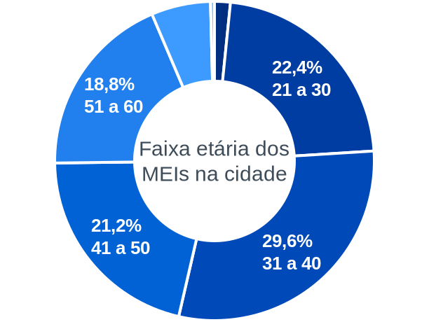 Faixa etária de MEIs na cidade de São Sebastião da Bela Vista