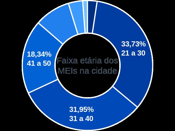 Faixa etária de MEIs na cidade de São Sebastião da Vargem Alegre