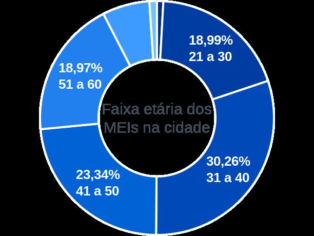 Faixa etária de MEIs na cidade de São Sebastião do Paraíso